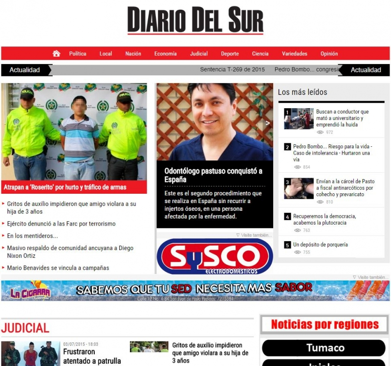 """Diario del Sur"" Website"